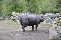 Tierpark.Hellabrunn.2020-10